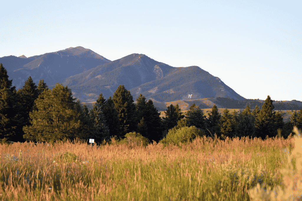 Triple Tree Ranch Bozeman Homes for Sale